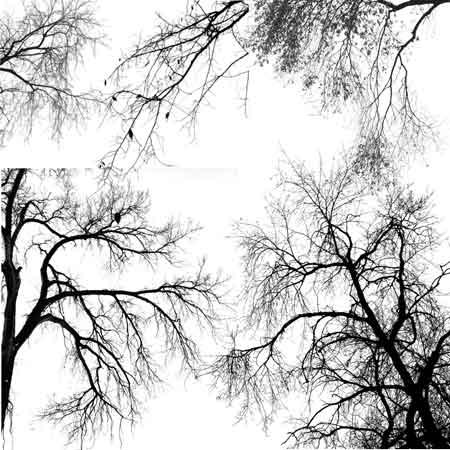 Всё для фотошопа, картинки, web-мастеру, книги по ...: http://web-come.narod.ru/kisti-7.html